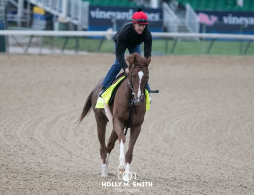 G1 Met Mile Preview: Code of Honor, McKinzie Square Off