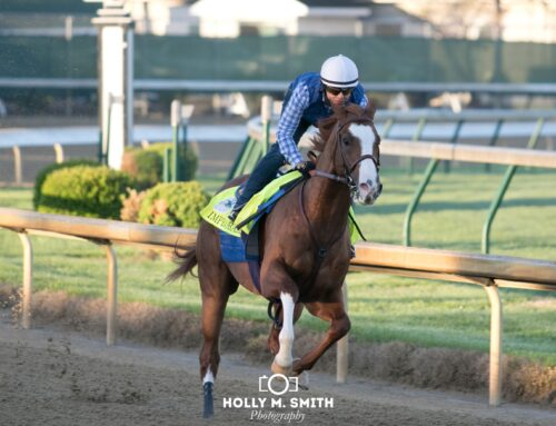 "Santa Anita Media Names Improbable the ""Horse of the Meet"""