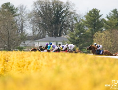 Keeneland Announces That Breeders' Cup 2020 Tickets Will Go On Sell March 9