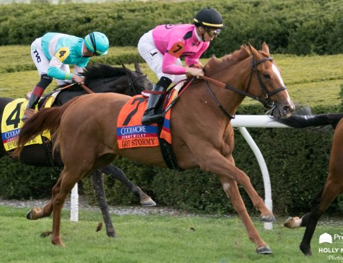 G3 Poker Stakes Preview: Got Stormy Returns