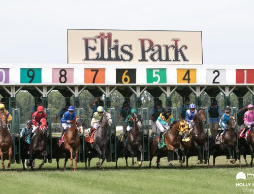 Asmussen Shoots For 4th Training Title at Ellis Park