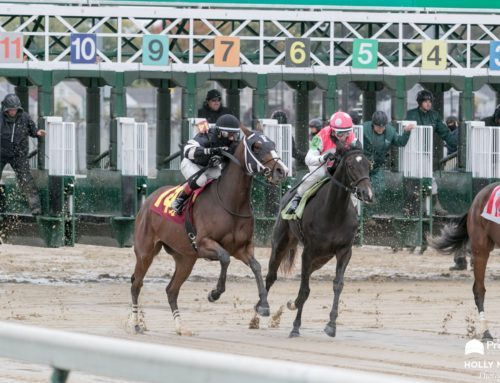 Why Own a Racehorse: Dreams Are Worth Chasing, Especially When You Catch Them