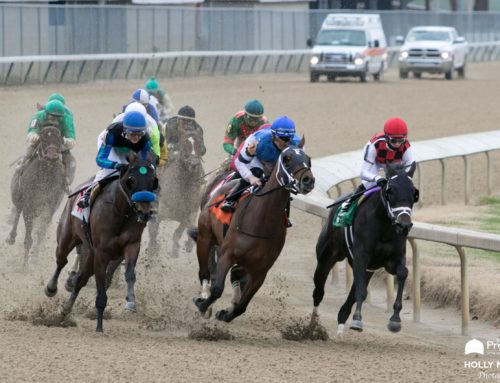 Churchill Downs Announces September Stakes Schedule