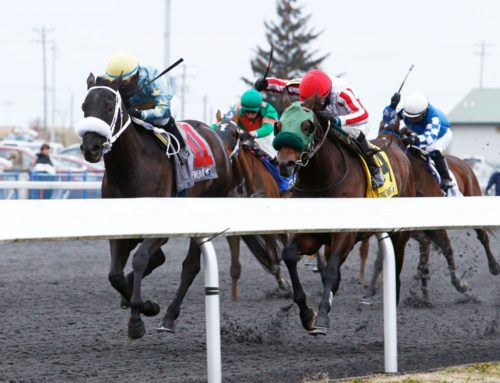 Cipriano Contreras May Be A Name That You Need to Know at Turfway Park