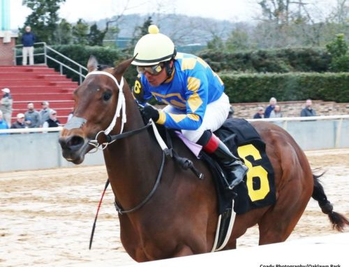 Notes & Quotes From the Smarty Jones Stakes: Gold Street