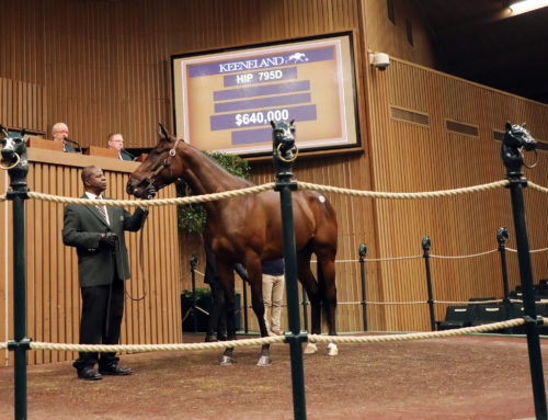 Keeneland January Sale Update: Schenck Purchases Top Two Broodmare Prospects on Day 2