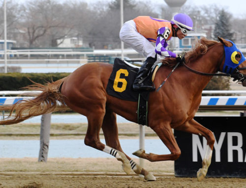 Aqueduct Barn Notes: War Stopper To Target G3 Gotham Next