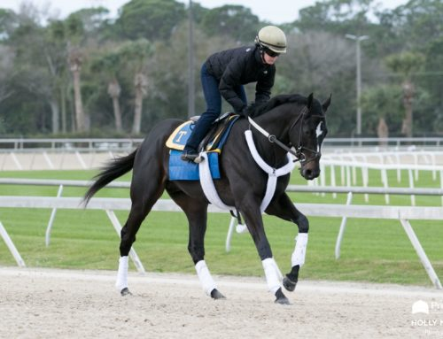 Pegasus World Cup Updates: Independence Hall Returns to Gulfstream Park With Unfinished Business