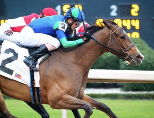 Notes & Quotes from the G3 Bayakoa Stakes: Go Google Yourself