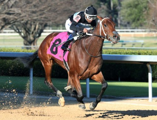 Oaklawn Park Barn Notes: La Renoleta Still Flawless