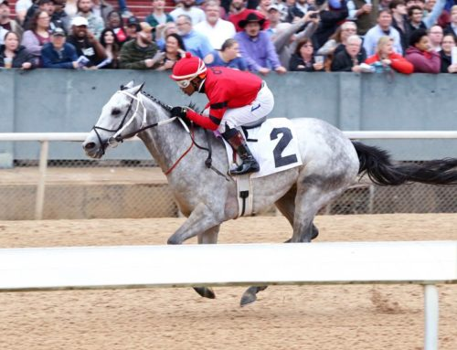 Notes & Quotes From the G3 Southwest Stakes: Silver Prospector