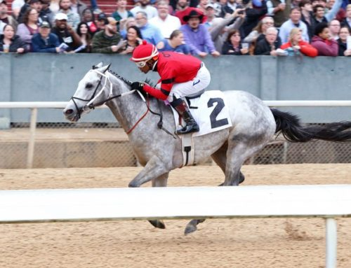 Oaklawn Park Barn Notes: Silver Prospector Headed to G2 Rebel Stakes Next