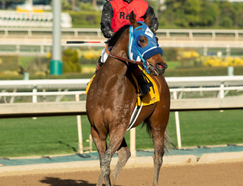 Santa Anita Barn Notes: Tamaraandtheboys Is Looking Good These Days