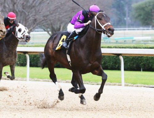 Notes & Quotes From the G3 Razorback Stakes: Warrior's Charge
