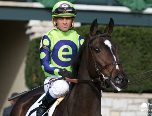 Rushing Fall, Got Stormy, Fifty Five To Meet in Wednesday's G3 Beaugay