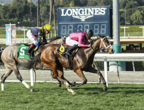 Santa Anita Barn Notes: Laura's Light Heads Up Solid Group for G3 Honeymoon Stakes