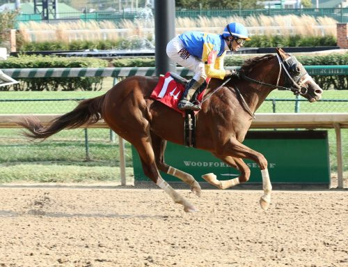 Catalano Has Manny Wah  Ready for Saturday's Aristides Stakes at Churchill Downs