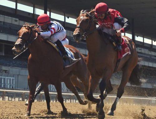 Notes & Quotes From the G3 Victory Ride Stakes: Frank's Rockette