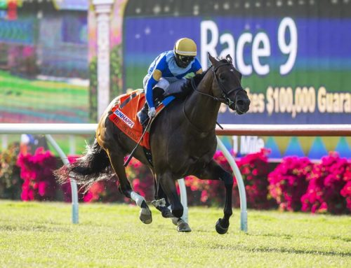 Notes & Quotes From the Oceanside Stakes: Hit the Road
