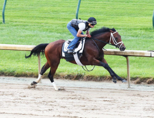 """""""The Pressbox's"""" KY Derby Rankings: Art Collector Goes In Ellis Park Derby This Saturday"""