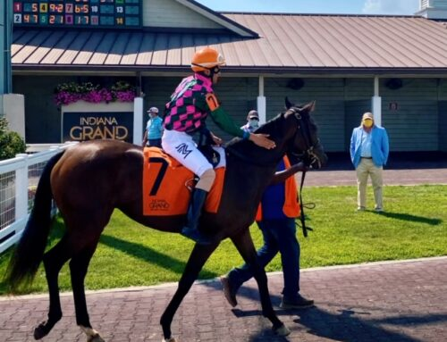 Why I Own a Racehorse? Because Race Day Makes It All Worthwhile