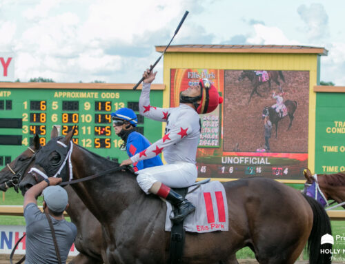 McLean's Updated Handicapping Statistics