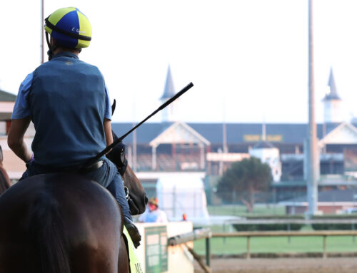 Max Player Headed to G1 Preakness Stakes
