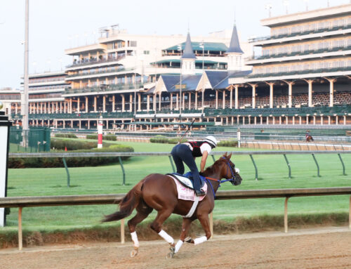 Dam of Swiss Skydiver To Be Sold at Keeneland In November