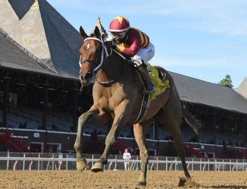 Notes & Quotes From the G2 Adirondack Stakes: Thoughtfully