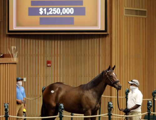 "Keeneland September Yearling Sales Ends With ""Successes"""