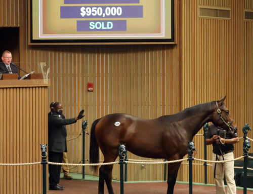 Keeneland September Yearling Sale Update: Uncle Mo Colt Brings $950,000