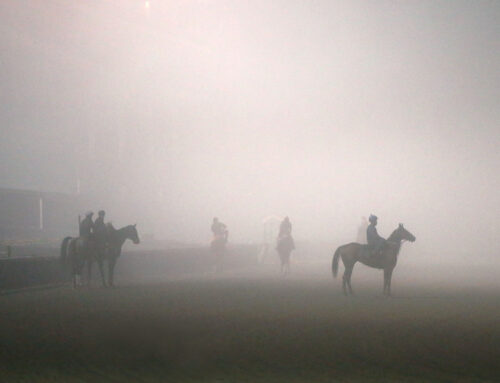 A Foggy & Soggy Morning at Churchill Downs: A Look Through the Eyes & Lens of Coady Photography