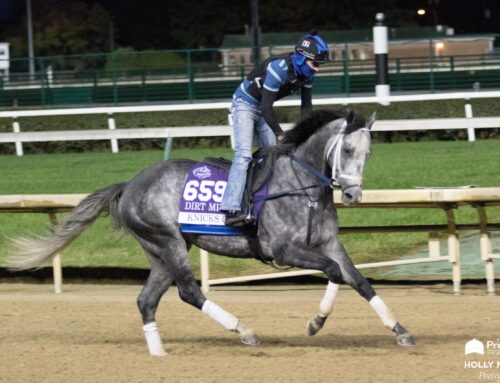 Pegasus World Cup News: Cox Happy With Knicks Go