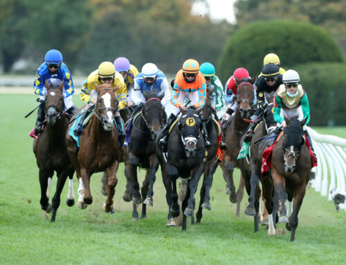 Keeneland Announces Changes For Grass Course
