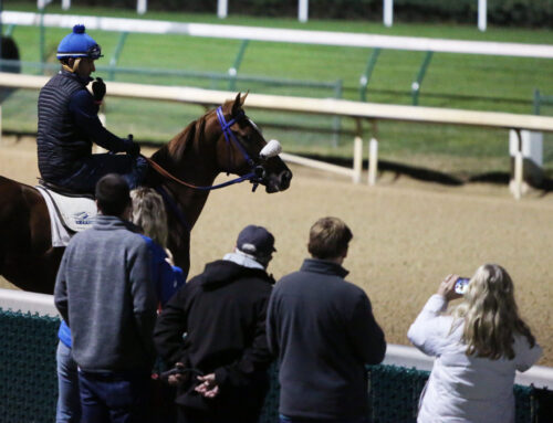 Breeders' Cup Hopefuls Work at Keeneland & Churchill Downs: Through the Eyes & Lens of Coady Photography