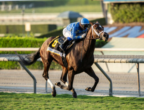 Notes & Quotes From Twilight Derby: Smooth Like Strait