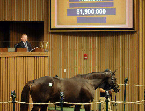 Indian Miss — Dam of Champion Mitole — Sells for $1.9 Million at Keeneland November Sale