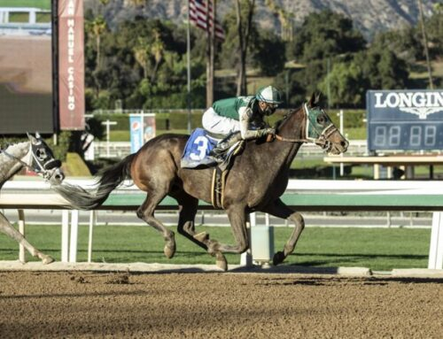 Notes & Quotes From the California Cup Derby: Big Fish