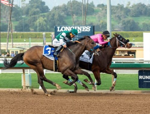 G3 Palos Verdes Stakes Preview: Captain Scotty Is Back