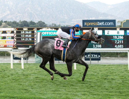 Notes & Quotes From the Clocker's Corner Stakes: Gregorian Chant