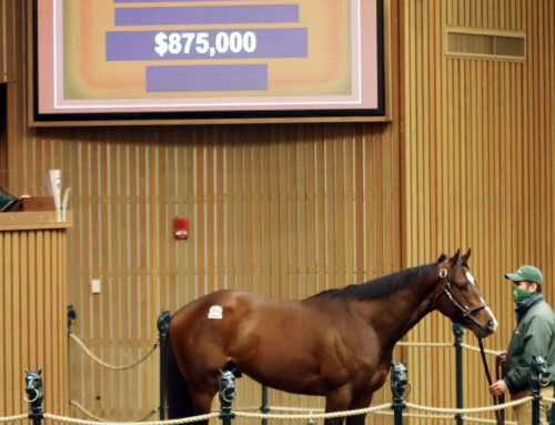Keeneland January Sale Boosted by Pompa Dispersal