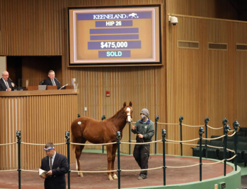 Yearling Colt by Munnings Tops Keeneland January Horses of All Ages Sale