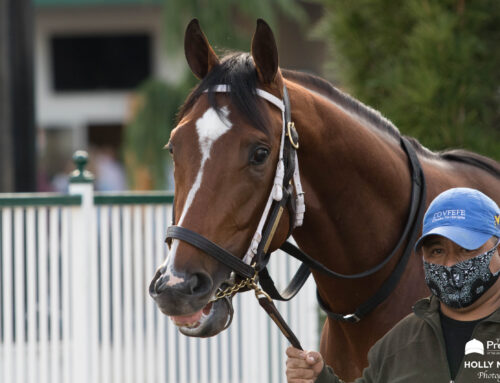 """""""The Pressbox's"""" Updated 2021 Kentucky Derby Rankings: Midnight Bourbon Jumps From the AE List Into Top Ten"""