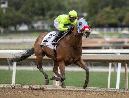 Notes & Quotes From the Palos Verdes Stakes: Wildman Jack