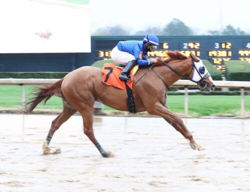 Notes & Quotes From the Razorback Stakes, Spring Fever Stakes: Mystic Guide, Kimari