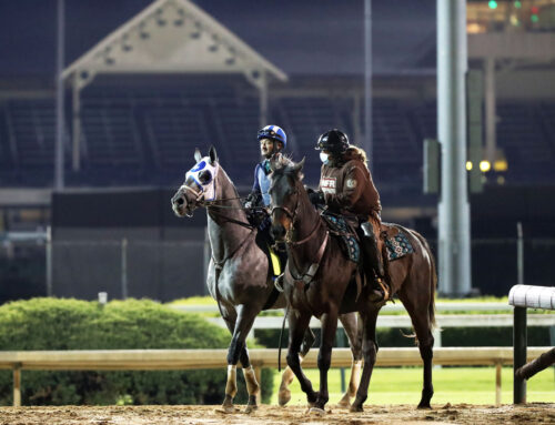 Essential Quality Is 1-2 Favorite For Saturday's G2 Jim Dandy