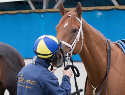 Sources: Monomoy Girl Retired After Sustaining Training Injury on Tuesday