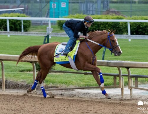 King Fury Returns in Saturday's Bourbon Trail Stakes at Churchill Downs