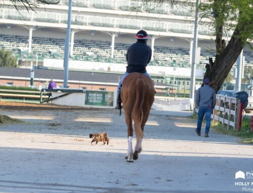 Today's KY Derby Photo Album: Through the Eyes & Lens of Our Very Own Holly M. Smith