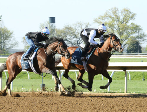Churchill Downs' Barn Notes: Highly Motivated & Others Continue Preparations for 147th KY Derby